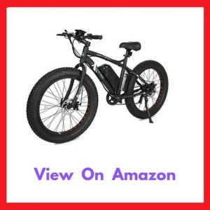 ECOTRIC Fat Tire Electric Mountain Bikes